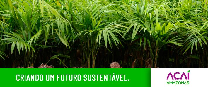Criando um futuro sustentável